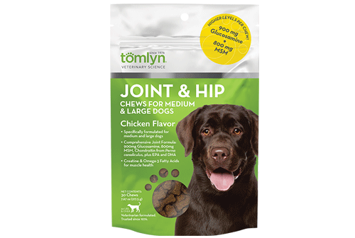Dog Joint and Hip Health
