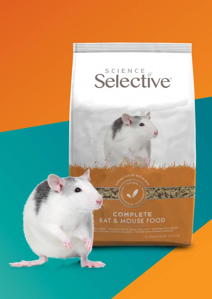 Wholesale Rat Food