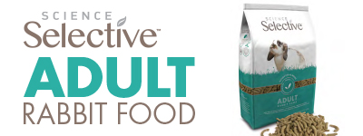 Adult Rabit Food